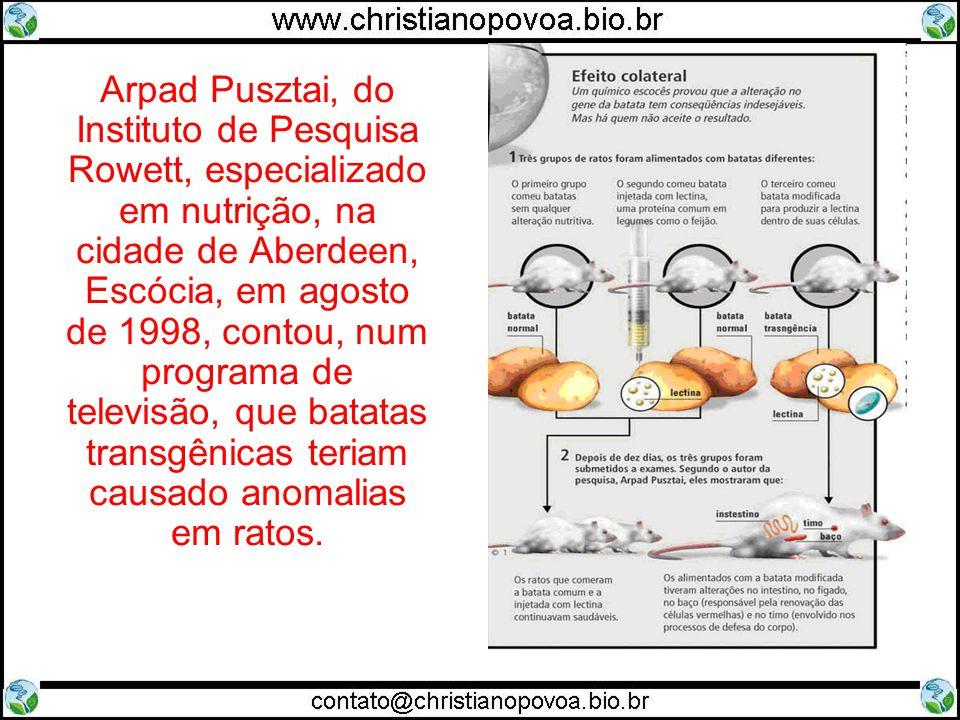 Arpad Pusztai, do Instituto de Pesquisa Rowett, especializado em nutrição, na cidade de Aberdeen, Escócia, em agosto de 1998, contou, num programa de televisão, que batatas transgênicas teriam causado anomalias em ratos.