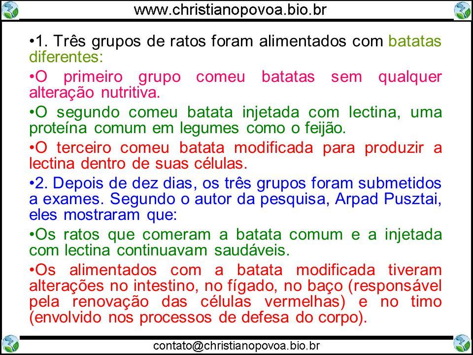 1. Três grupos de ratos foram alimentados com batatas diferentes: O primeiro grupo comeu batatas sem qualquer alteração nutritiva. O segundo comeu bat