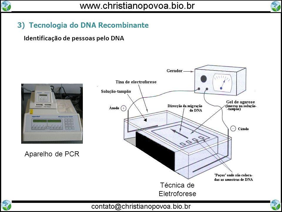 3) Tecnologia do DNA Recombinante Identificação de pessoas pelo DNA Aparelho de PCR Técnica de Eletroforese