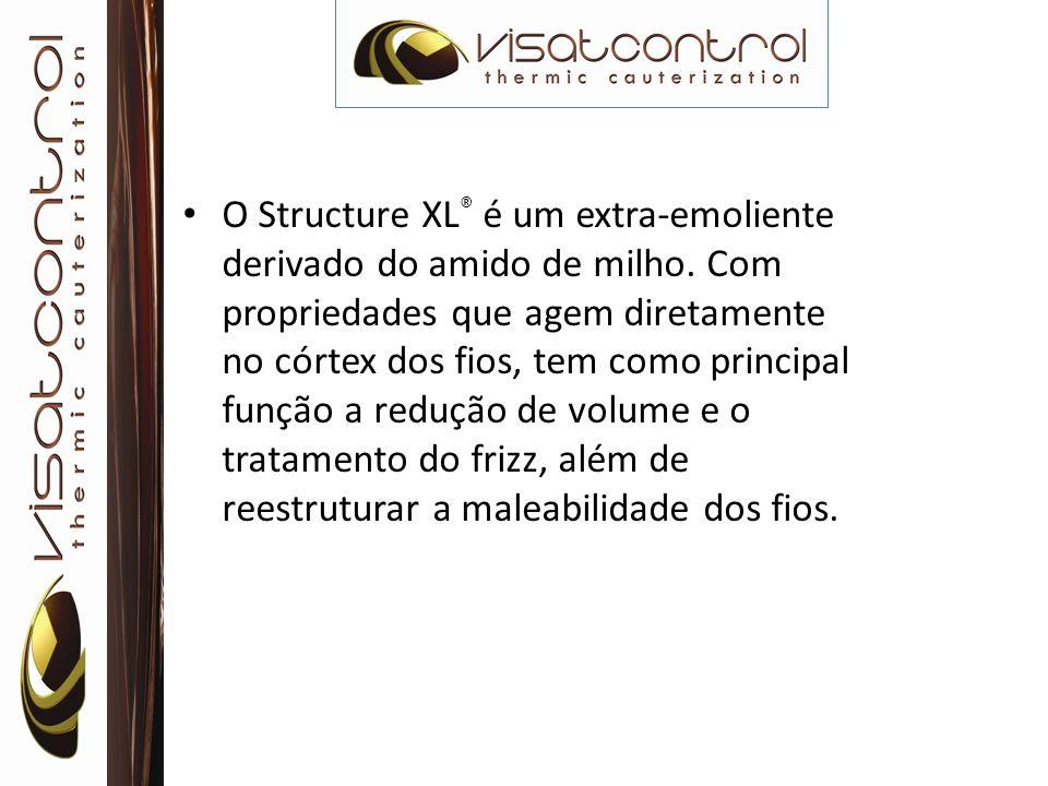 O Structure XL ® é um extra-emoliente derivado do amido de milho. Com propriedades que agem diretamente no córtex dos fios, tem como principal função