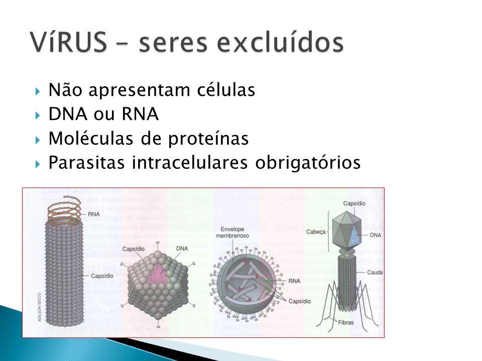 Não apresentam células DNA ou RNA Moléculas de proteínas Parasitas intracelulares obrigatórios