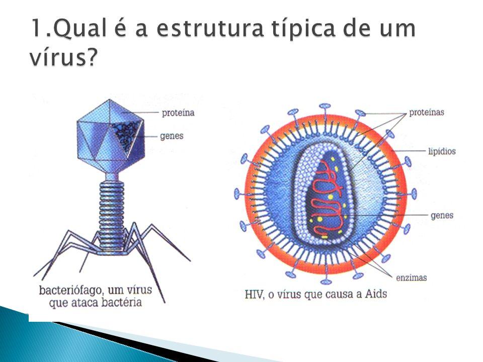 Vírus atacando células