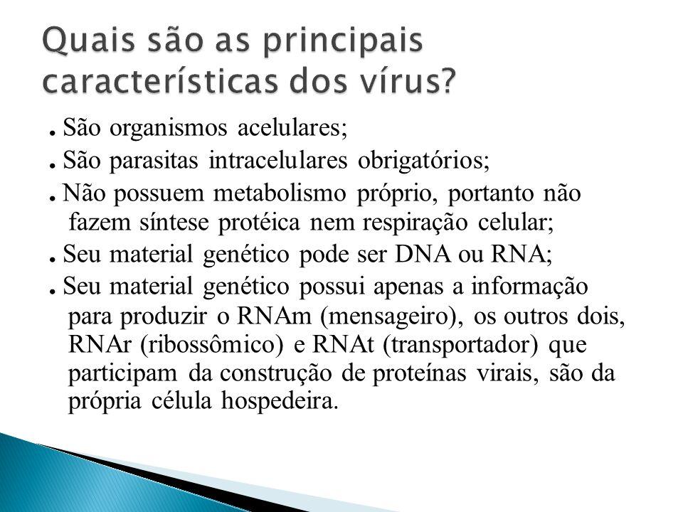 GRIPE sempre deve ser combatida Aviária Estacional H1N1 suína SAZONAL