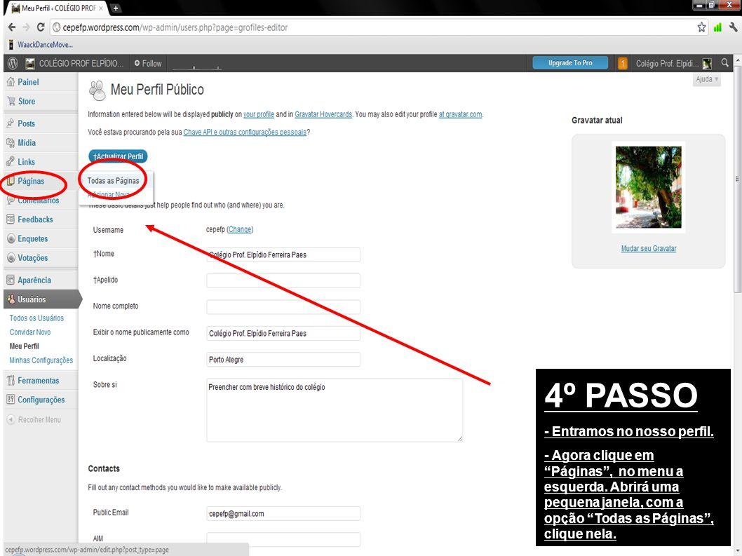 4º PASSO - Entramos no nosso perfil. - Agora clique em Páginas, no menu a esquerda.