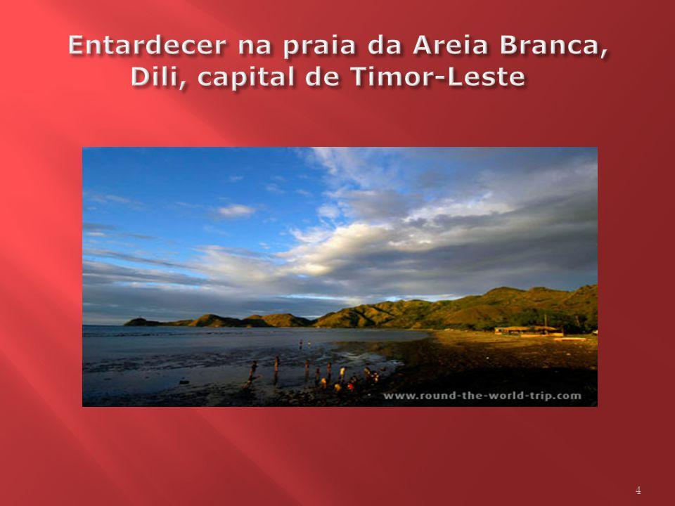 Foi destacada a participação brasileira na administração provisória coordenada pela ONU nesse país, o mais jovem estado independente de língua portugu