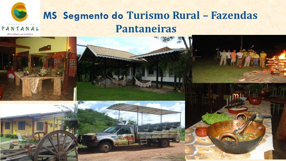 MS Segmento do Turismo Rural – Fazendas Pantaneiras