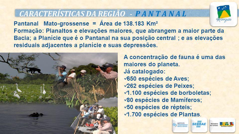 CARACTERÍSTICAS DA REGIÃO - P A N T A N A L Pantanal Mato-grossense = Área de 138.183 Km² Formação: Planaltos e elevações maiores, que abrangem a maio