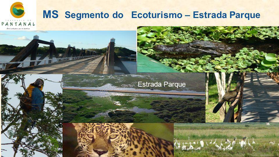 MS Segmento do Ecoturismo – Estrada Parque Estrada Parque