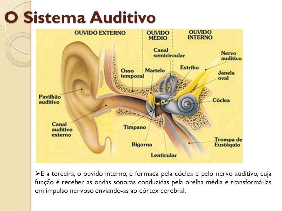 Como funciona a audição.