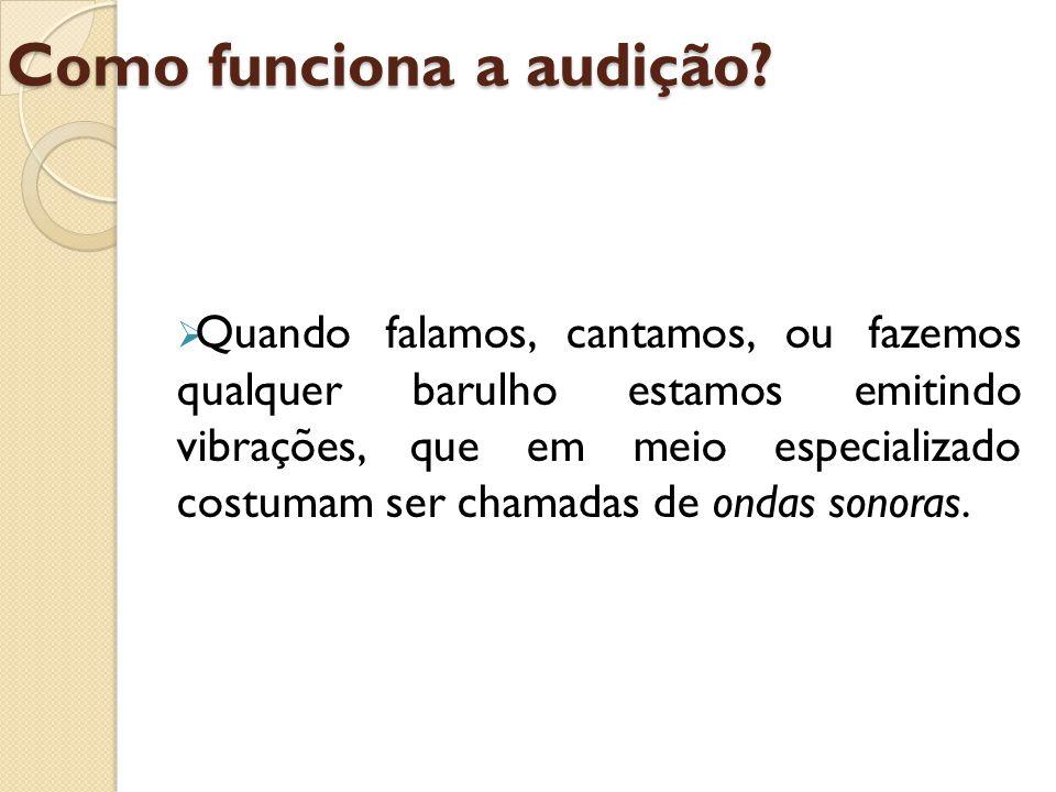 Percurso das ondas sonoras no Sistema Auditivo As ondas sonoras adentram a orelha pelo conduto auditivo (1) e fazem vibrar o tímpano (2), que por sua vez, faz vibrar três ossinhos que se localizam ali perto: o martelo (3), a bigorna (4) e o estribo (5).