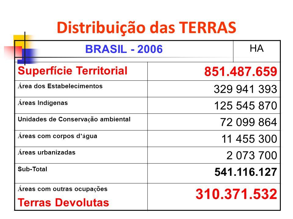 Distribuição das TERRAS BRASIL - 2006 HA Superfície Territorial 851.487.659 Á rea dos Estabelecimentos 329 941 393 Á reas Ind í genas 125 545 870 Unid