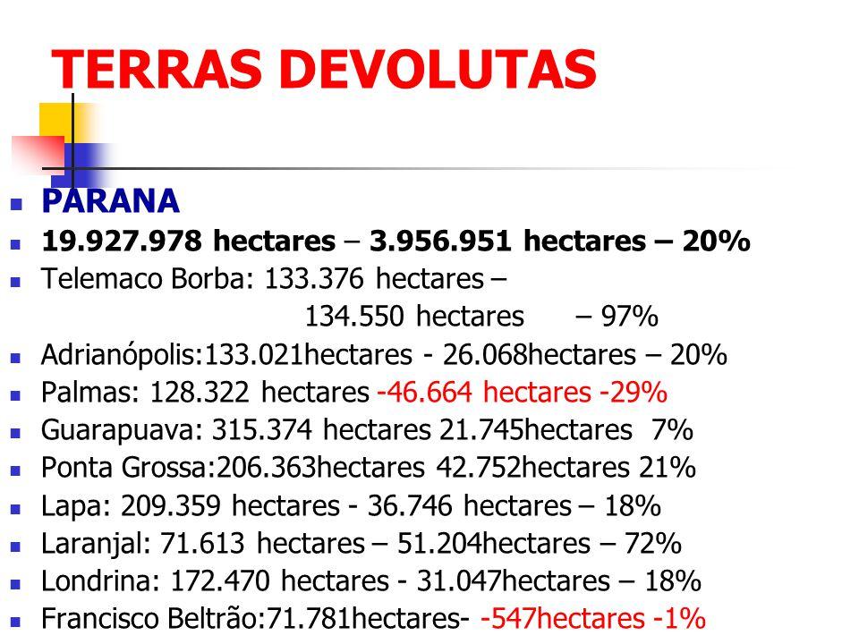 TERRAS DEVOLUTAS PARANA 19.927.978 hectares – 3.956.951 hectares – 20% Telemaco Borba: 133.376 hectares – 134.550 hectares – 97% Adrianópolis:133.021h