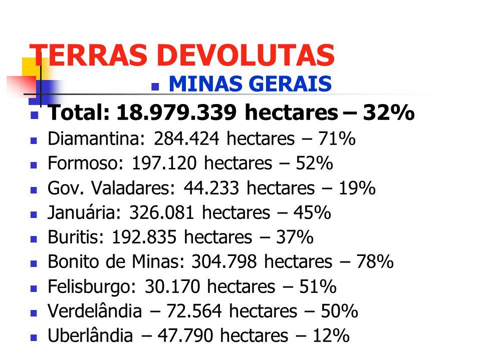 TERRAS DEVOLUTAS MINAS GERAIS Total: 18.979.339 hectares – 32% Diamantina: 284.424 hectares – 71% Formoso: 197.120 hectares – 52% Gov. Valadares: 44.2