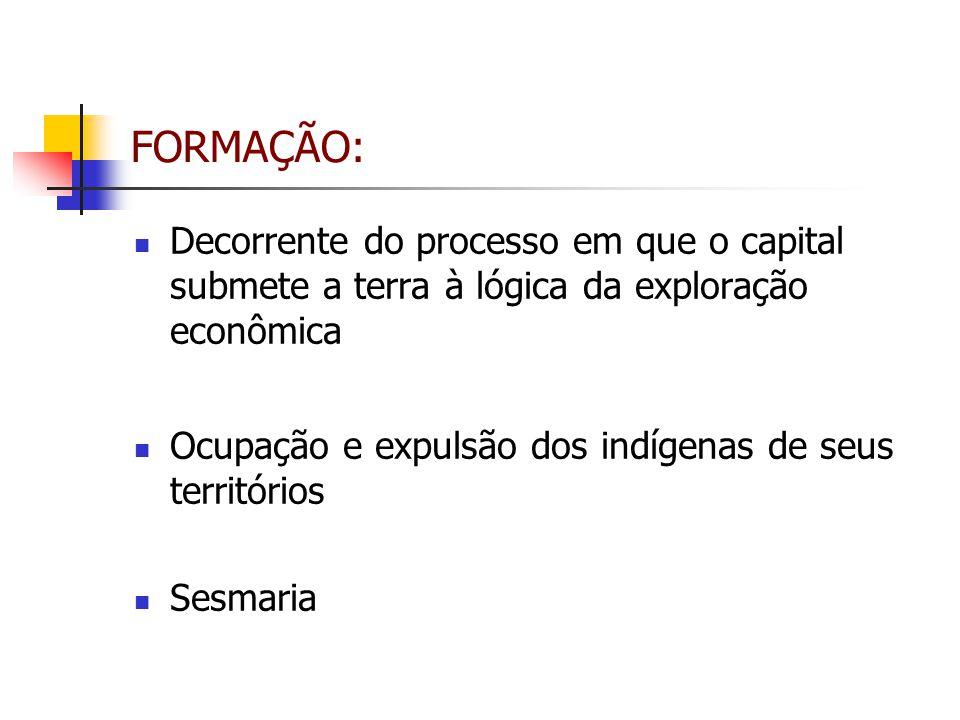 FORMAÇÃO: Decorrente do processo em que o capital submete a terra à lógica da exploração econômica Ocupação e expulsão dos indígenas de seus territóri