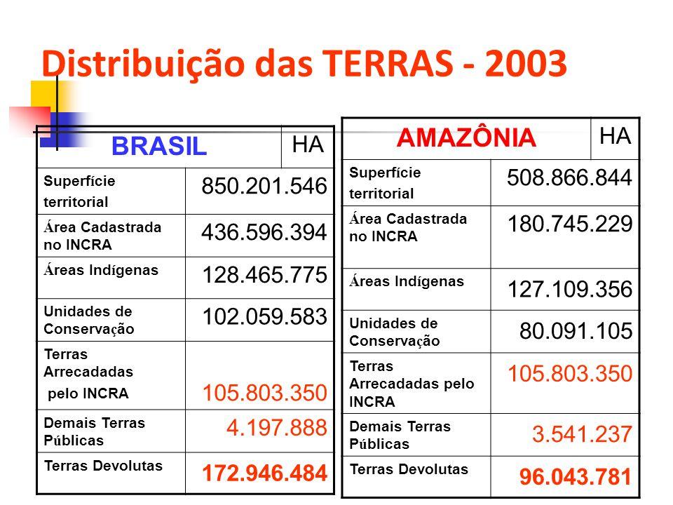 Distribuição das TERRAS - 2003 BRASIL HA Superf í cie territorial 850.201.546 Á rea Cadastrada no INCRA 436.596.394 Á reas Ind í genas 128.465.775 Uni