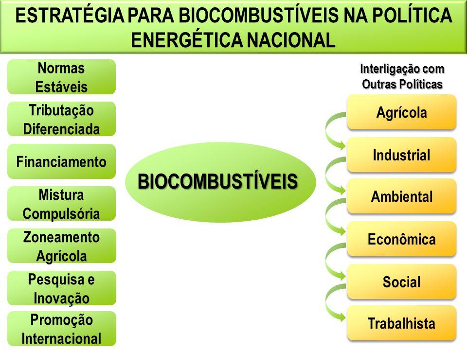 ESTRATÉGIA PARA BIOCOMBUSTÍVEIS NA POLÍTICA ENERGÉTICA NACIONAL BIOCOMBUSTÍVEIS Normas Estáveis Tributação Diferenciada Financiamento Mistura Compulsó