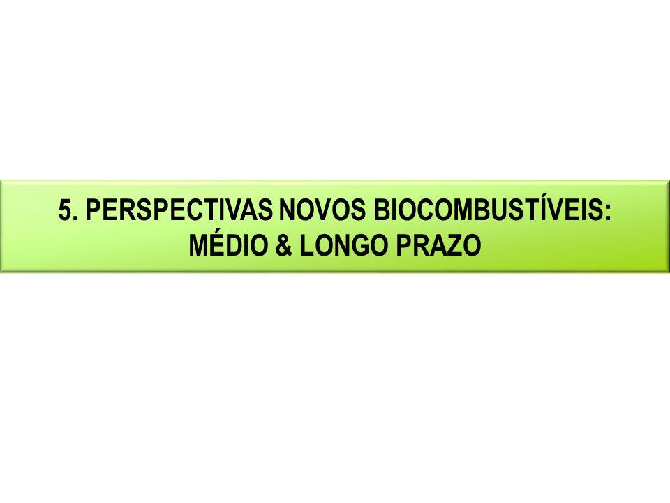 5. PERSPECTIVAS NOVOS BIOCOMBUSTÍVEIS: MÉDIO & LONGO PRAZO
