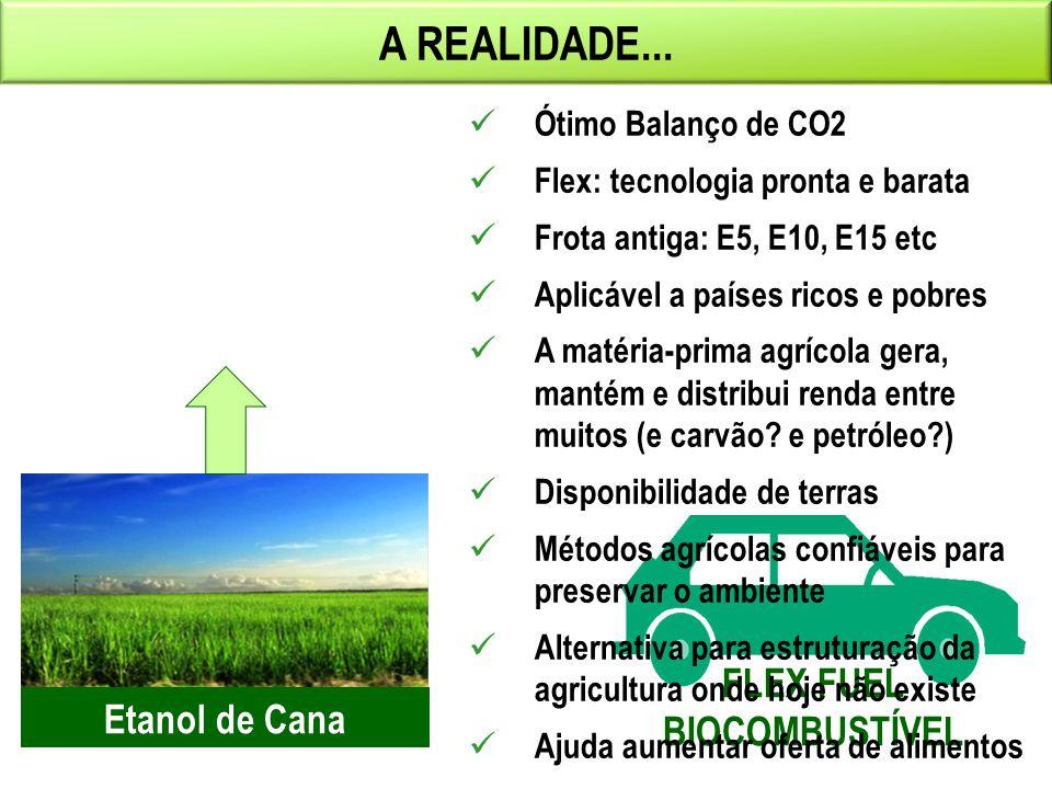 42 A REALIDADE... FLEX FUEL BIOCOMBUSTÍVEL Etanol de Cana Ótimo Balanço de CO2 Flex: tecnologia pronta e barata Frota antiga: E5, E10, E15 etc Aplicáv