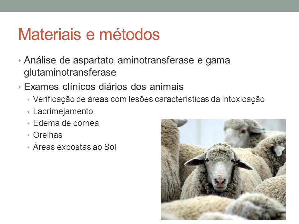 Materiais e métodos Análise de aspartato aminotransferase e gama glutaminotransferase Exames clínicos diários dos animais Verificação de áreas com les