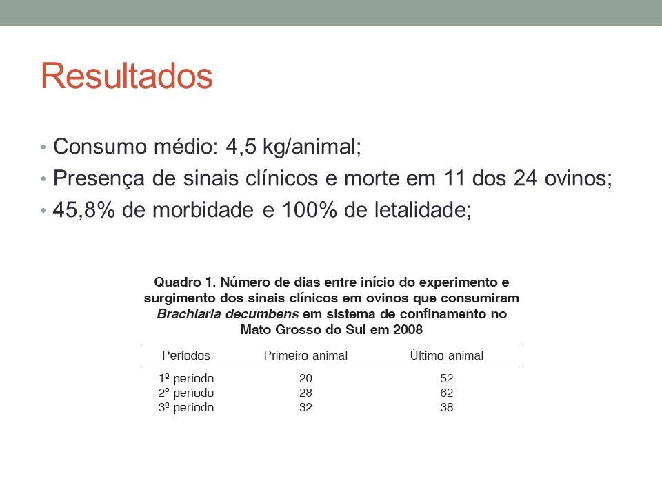 Resultados Consumo médio: 4,5 kg/animal; Presença de sinais clínicos e morte em 11 dos 24 ovinos; 45,8% de morbidade e 100% de letalidade;