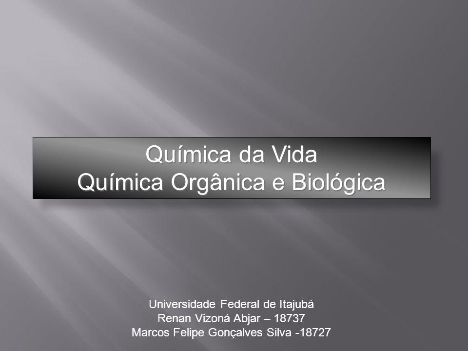 Química da Vida Química Orgânica e Biológica Universidade Federal de Itajubá Renan Vizoná Abjar – 18737 Marcos Felipe Gonçalves Silva -18727