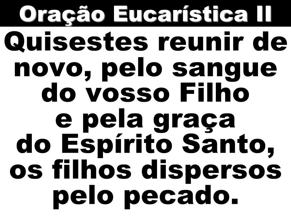 Quisestes reunir de novo, pelo sangue do vosso Filho e pela graça do Espírito Santo, os filhos dispersos pelo pecado. Oração Eucarística II