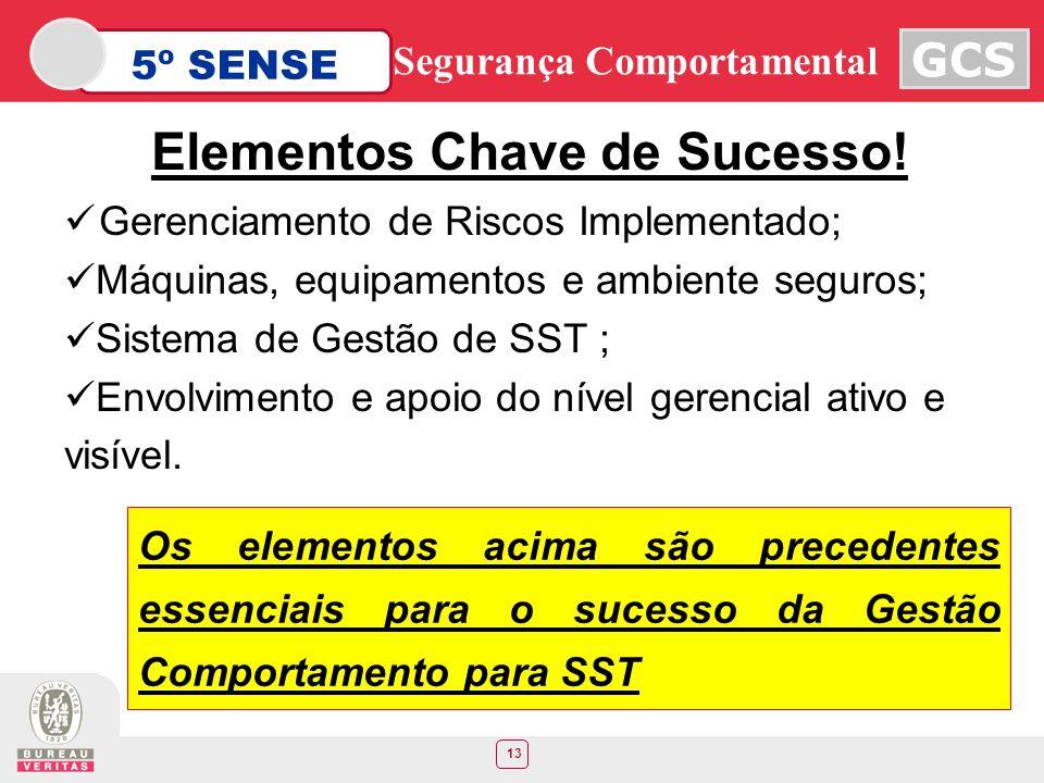13 5º SENSE GCS Segurança Comportamental Gerenciamento de Riscos Implementado; Máquinas, equipamentos e ambiente seguros; Sistema de Gestão de SST ; E