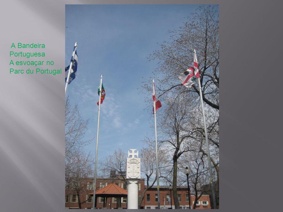 A Bandeira Portuguesa A esvoaçar no Parc du Portugal