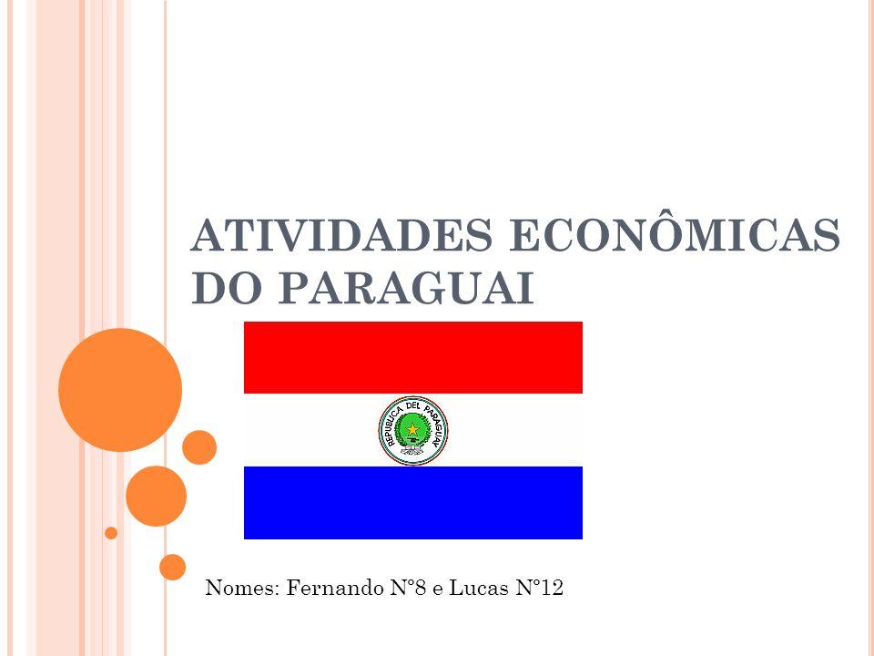 ATIVIDADES ECONÔMICAS DO PARAGUAI Nomes: Fernando Nº8 e Lucas Nº12