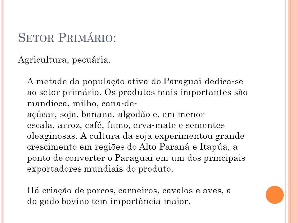 S ETOR P RIMÁRIO : Agricultura, pecuária. A metade da população ativa do Paraguai dedica-se ao setor primário. Os produtos mais importantes são mandio