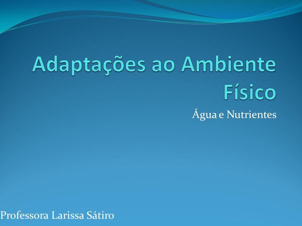 Água e Nutrientes Professora Larissa Sátiro