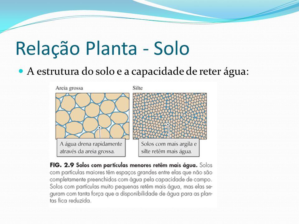 Relação Planta - Solo A estrutura do solo e a capacidade de reter água: