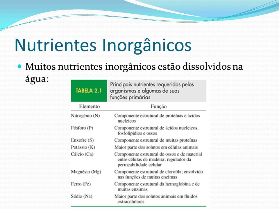 Nutrientes Inorgânicos Muitos nutrientes inorgânicos estão dissolvidos na água: