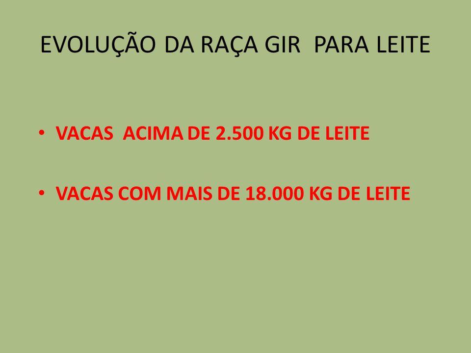EVOLUÇÃO DA RAÇA GIR PARA LEITE VACAS ACIMA DE 2.500 KG DE LEITE VACAS COM MAIS DE 18.000 KG DE LEITE