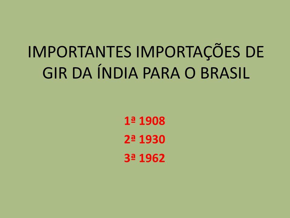IMPORTANTES IMPORTAÇÕES DE GIR DA ÍNDIA PARA O BRASIL 1ª 1908 2ª 1930 3ª 1962