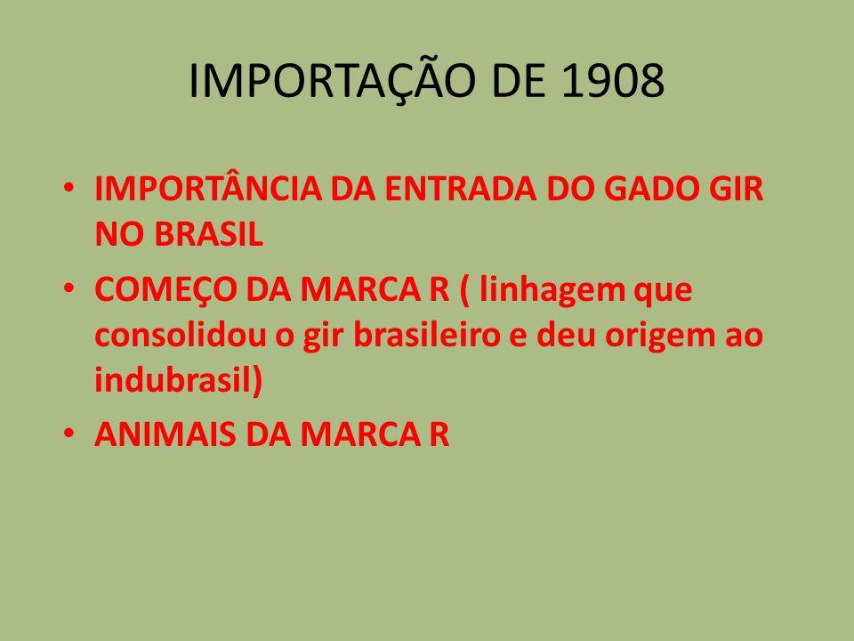 IMPORTAÇÃO DE 1908 IMPORTÂNCIA DA ENTRADA DO GADO GIR NO BRASIL COMEÇO DA MARCA R ( linhagem que consolidou o gir brasileiro e deu origem ao indubrasi