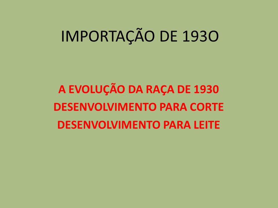 IMPORTAÇÃO DE 193O A EVOLUÇÃO DA RAÇA DE 1930 DESENVOLVIMENTO PARA CORTE DESENVOLVIMENTO PARA LEITE