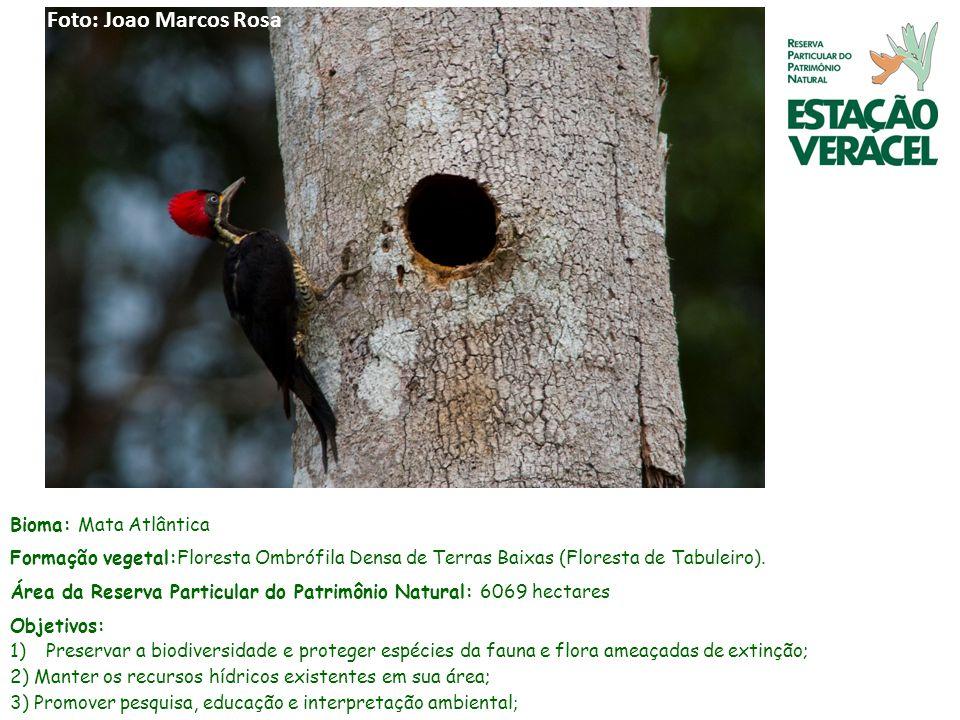 Bioma: Mata Atlântica Formação vegetal:Floresta Ombrófila Densa de Terras Baixas (Floresta de Tabuleiro). Área da Reserva Particular do Patrimônio Nat