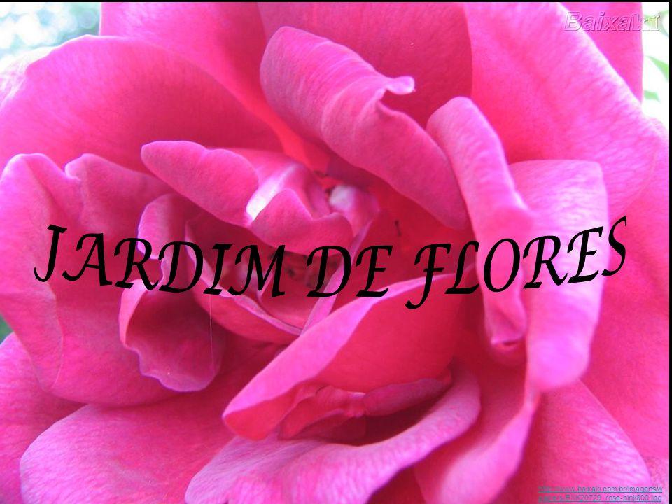 Esta revista tem o objetivo de mostrar a importância das flores, sua origem, simbologia e a parte científica.