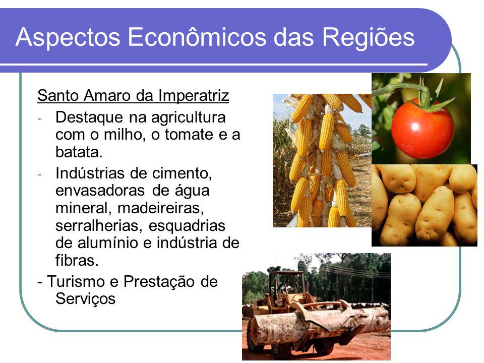 Aspectos Econômicos das Regiões Santo Amaro da Imperatriz - Destaque na agricultura com o milho, o tomate e a batata. - Indústrias de cimento, envasad