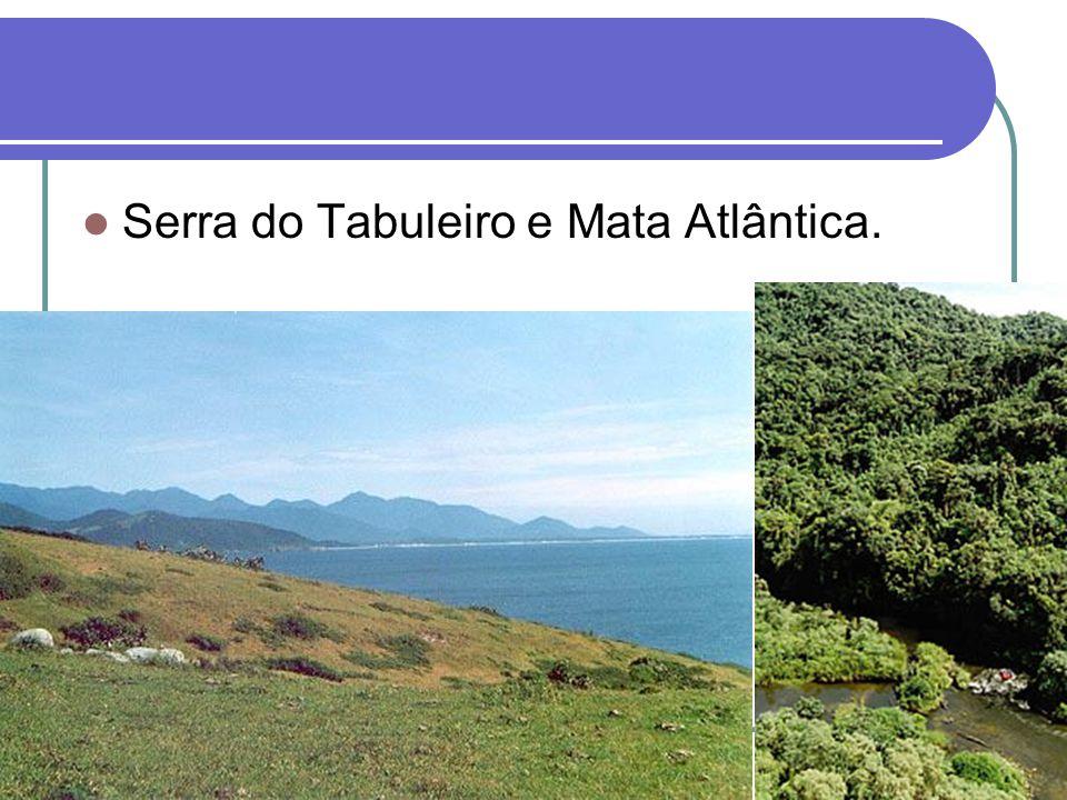 Serra do Tabuleiro e Mata Atlântica.