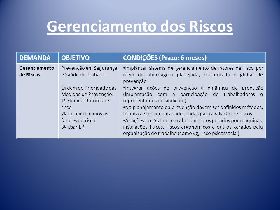 Gerenciamento dos Riscos DEMANDAOBJETIVOCONDIÇÕES (Prazo: 6 meses) Gerenciamento de Riscos Prevenção em Segurança e Saúde do Trabalho Ordem de Priorid