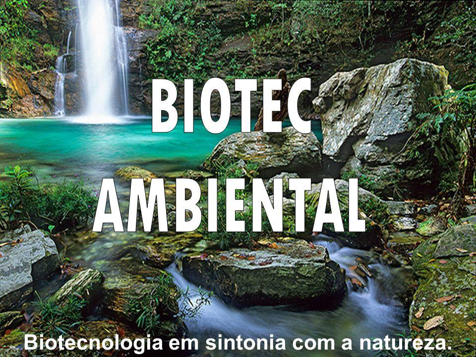 Buscando uma alternativa sustentável o ambientalista Galdino Santana de Limas desenvolveu após mais de 40 anos de estudos e pesquisa o SISNATE.