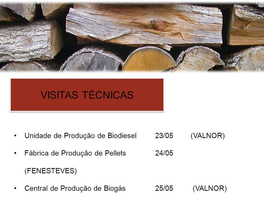 VISITAS TÉCNICAS Unidade de Produção de Biodiesel23/05(VALNOR) Fábrica de Produção de Pellets24/05 (FENESTEVES) Central de Produção de Biogás25/05 (VALNOR)
