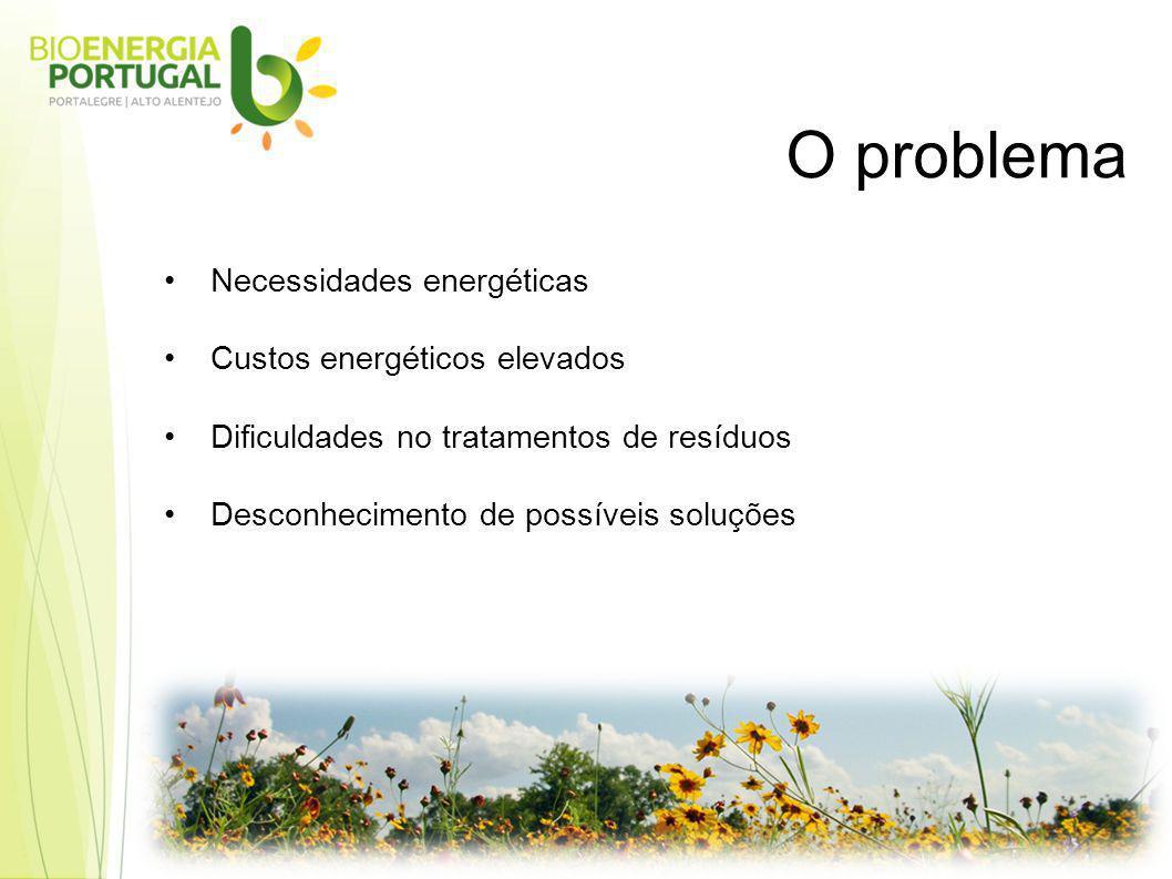 Necessidades energéticas Custos energéticos elevados Dificuldades no tratamentos de resíduos Desconhecimento de possíveis soluções O problema