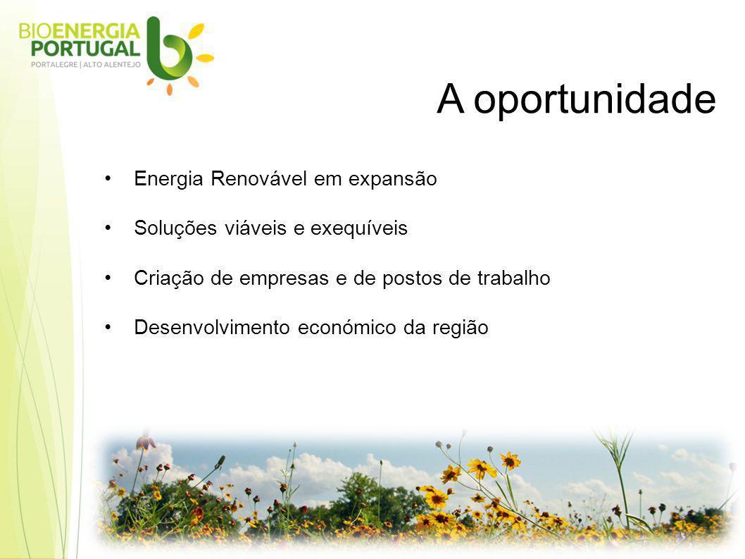 Energia Renovável em expansão Soluções viáveis e exequíveis Criação de empresas e de postos de trabalho Desenvolvimento económico da região A oportunidade