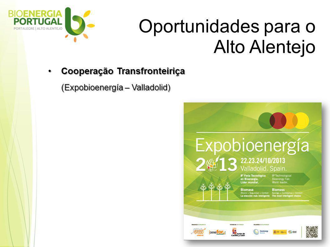 Oportunidades para o Alto Alentejo Cooperação TransfronteiriçaCooperação Transfronteiriça ( Expobioenergía – Valladolid)