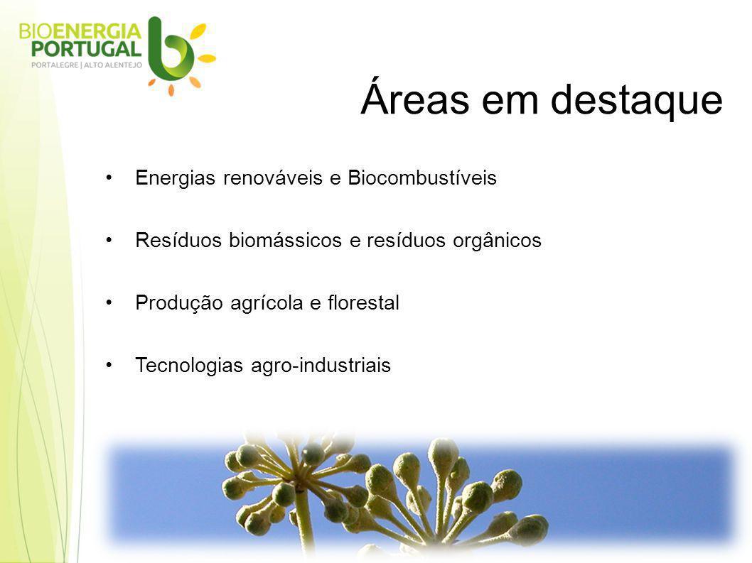 Energias renováveis e Biocombustíveis Resíduos biomássicos e resíduos orgânicos Produção agrícola e florestal Tecnologias agro-industriais Áreas em destaque