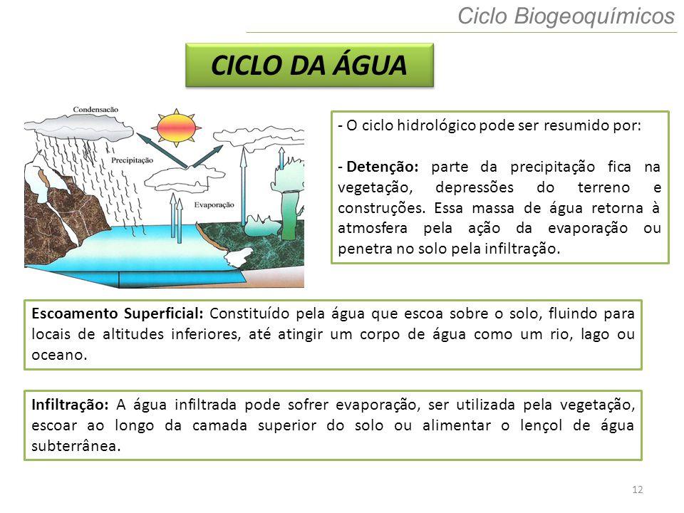 12 Ciclo Biogeoquímicos CICLO DA ÁGUA - O ciclo hidrológico pode ser resumido por: - Detenção: parte da precipitação fica na vegetação, depressões do