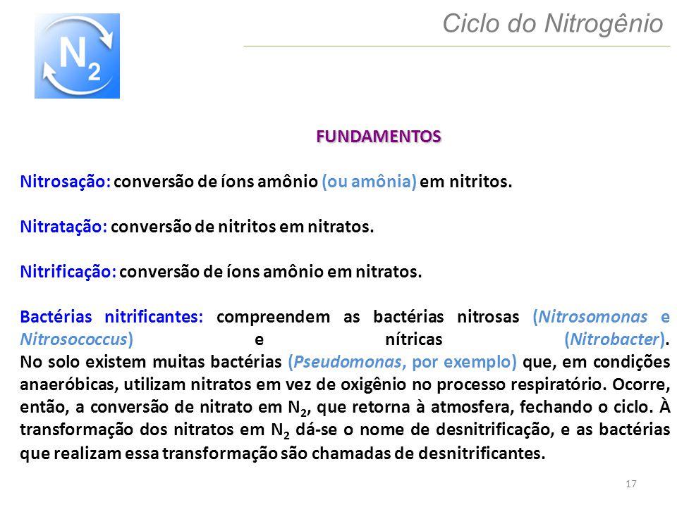 17 Ciclo do Nitrogênio FUNDAMENTOS Nitrosação: conversão de íons amônio (ou amônia) em nitritos. Nitratação: conversão de nitritos em nitratos. Nitrif